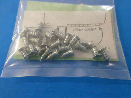 1955-57 Door Belt Moulding Screws